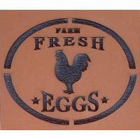 Molde de EVA Placa Relevo - Farm Fresh E..