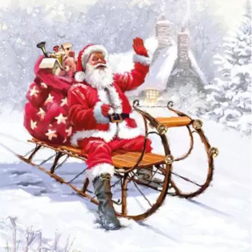 Guardanapo Santa on Sledge - 2 unid