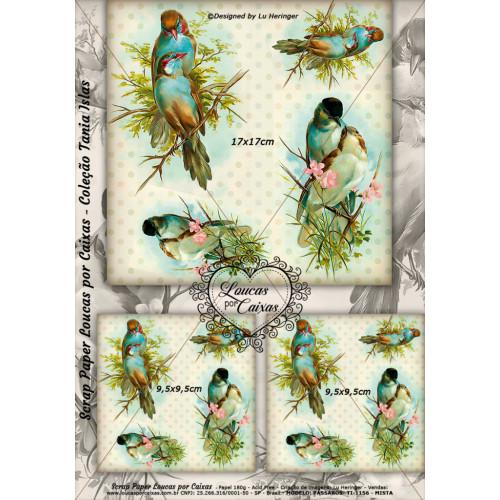Scrap Paper Face Única 29x21cm TI-1156 - Loucas Por Caixas - Coleção Tania Islas