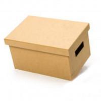 Caixa Box PQ - 30x17x20cm..
