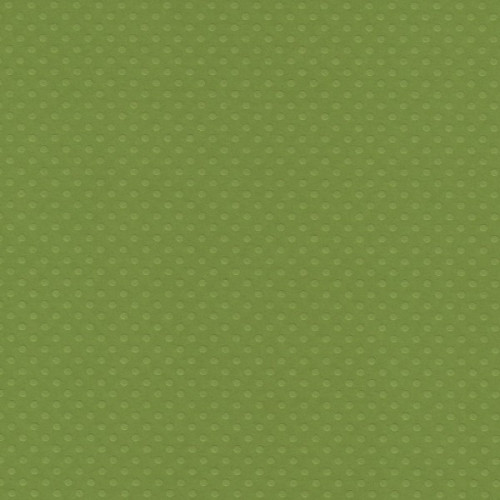 Papel  Scrap Cardstock Bolinhas Ii Verde Relva 30,5X30,5 Cm