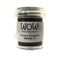 Pó Emboss - WOW! - Primary Evergreen..